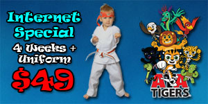 4 weeks for $49 oswego il ata martial arts